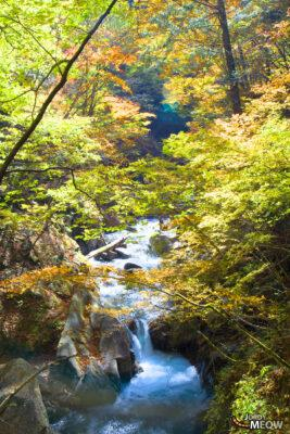 autumn, chubu, japan, japanese, natural, nature, waterfall, yamanashi